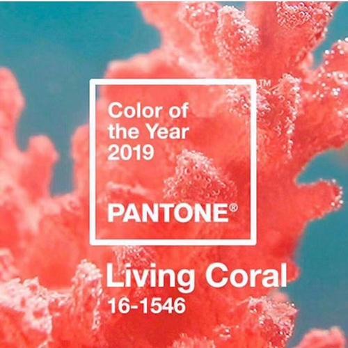 2019 Pantone年度色发布:活力珊瑚粉 就要你好看!